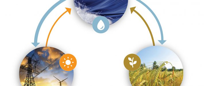 The Water-Energy Nexus: Challenges and Opportunities