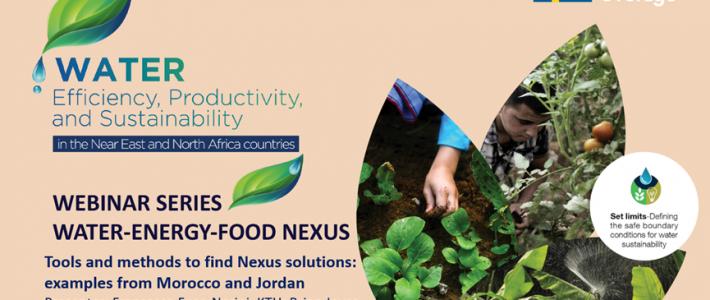FAO Water-Energy-Food Nexus webinar series